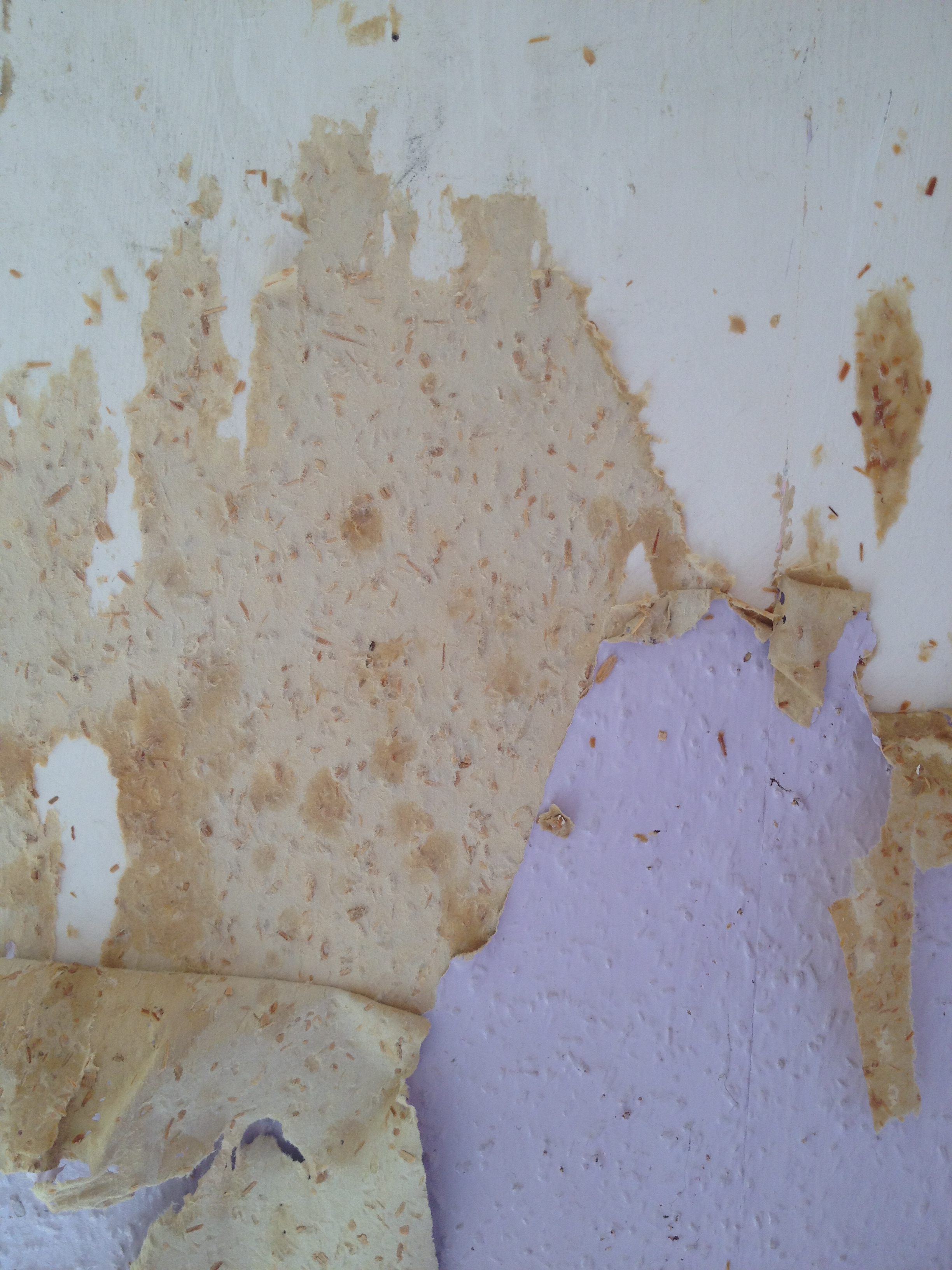 New Posts  Removing Wallpaper From Plaster. Bet You Didn39t Know   modelismo hld com