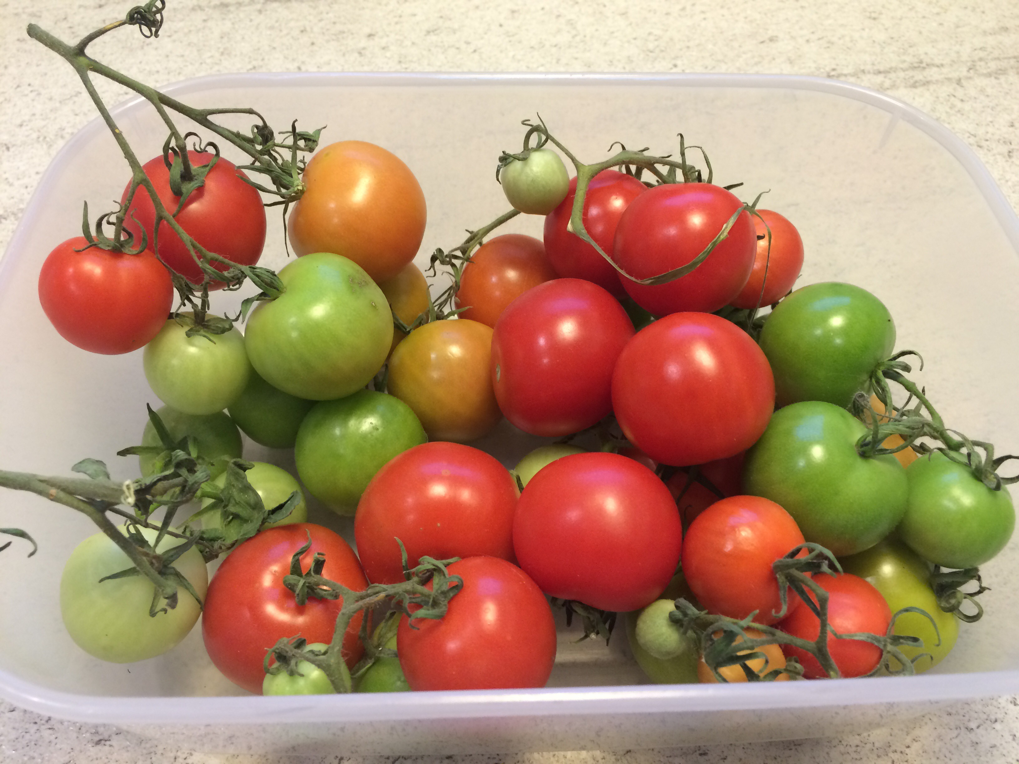 How to cook with green tomatoes