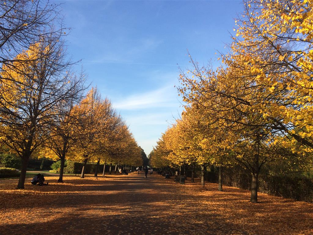 Autumn in London with Frieze Sculpture Park 2016